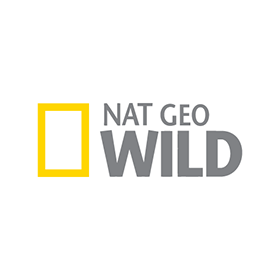 National Geographic Wild Logo Vector Download - National Geographic Vector, Transparent background PNG HD thumbnail