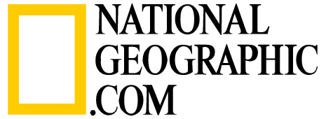 Report - National Geographic Vector, Transparent background PNG HD thumbnail