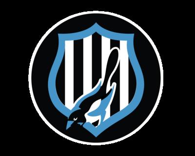 Chorus - Newcastle United, Transparent background PNG HD thumbnail