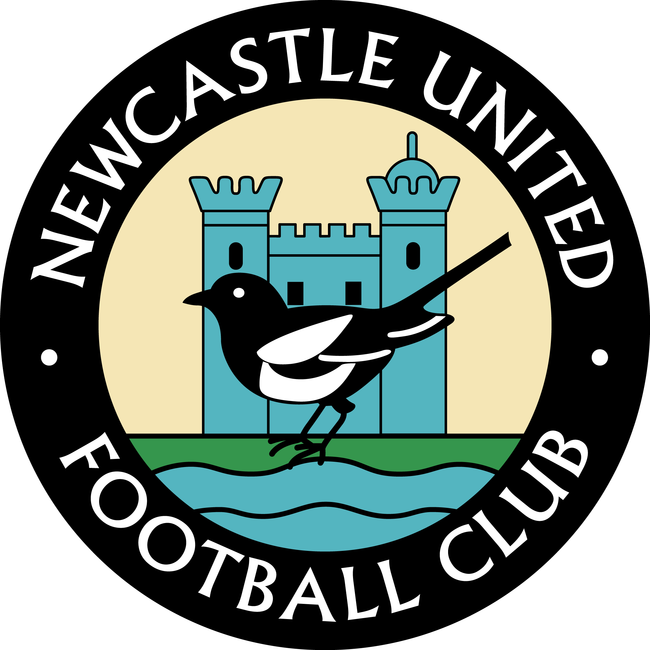 Thanks 57311604D406Dc48258470568016Ee82.jpg - Newcastle United, Transparent background PNG HD thumbnail