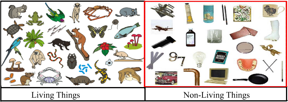 Non Living Things Pictures For Kids Png - Unit 1 :living Things And Non Living Things, Transparent background PNG HD thumbnail