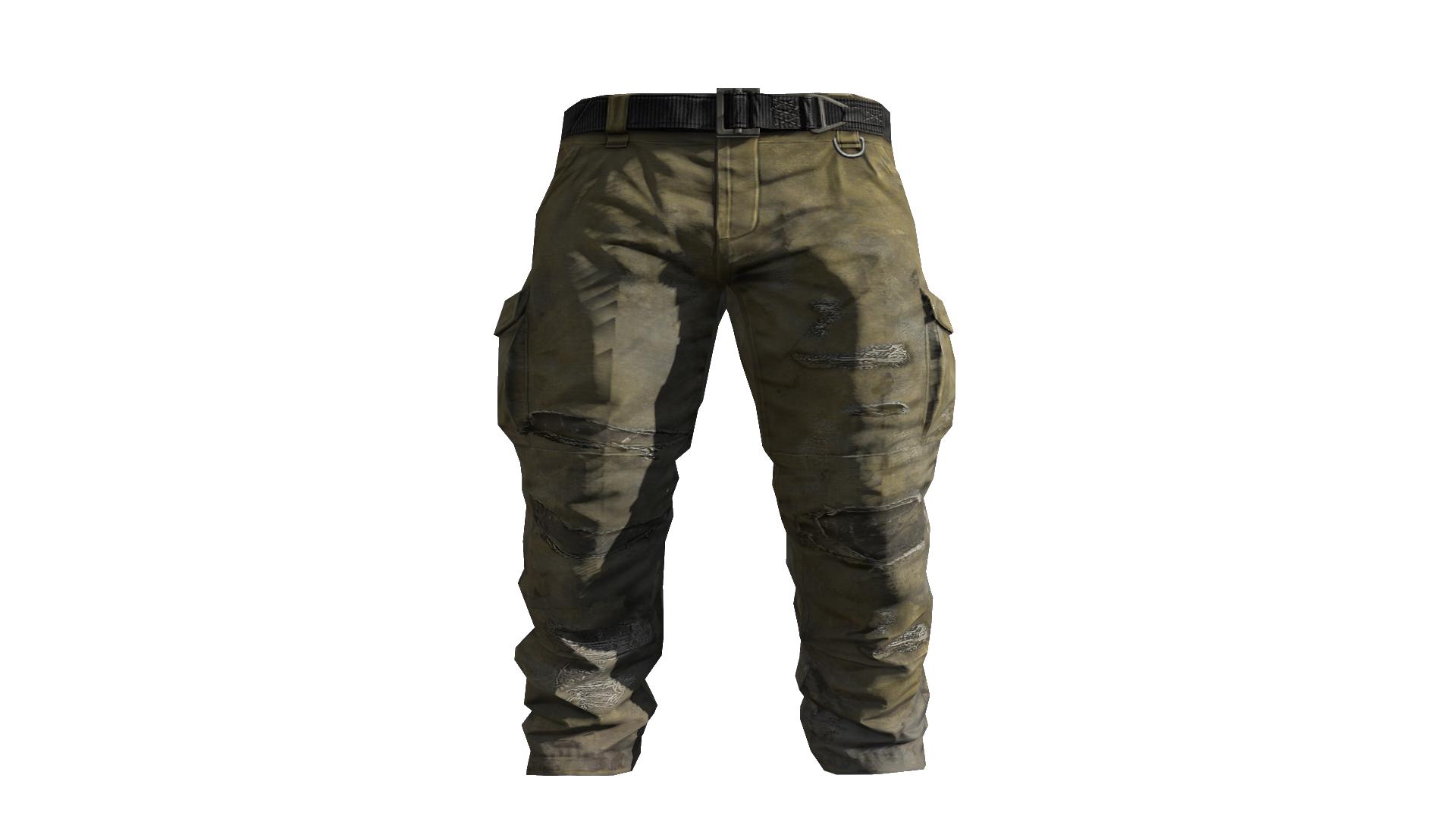 Beige Cargo Pants Model (D Bd).png - Pants, Transparent background PNG HD thumbnail