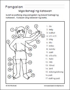 Parts Of The Body For Kids Png Tagalog - Mbnk_3 Mga Sagot Sa Mbnk_3, Transparent background PNG HD thumbnail
