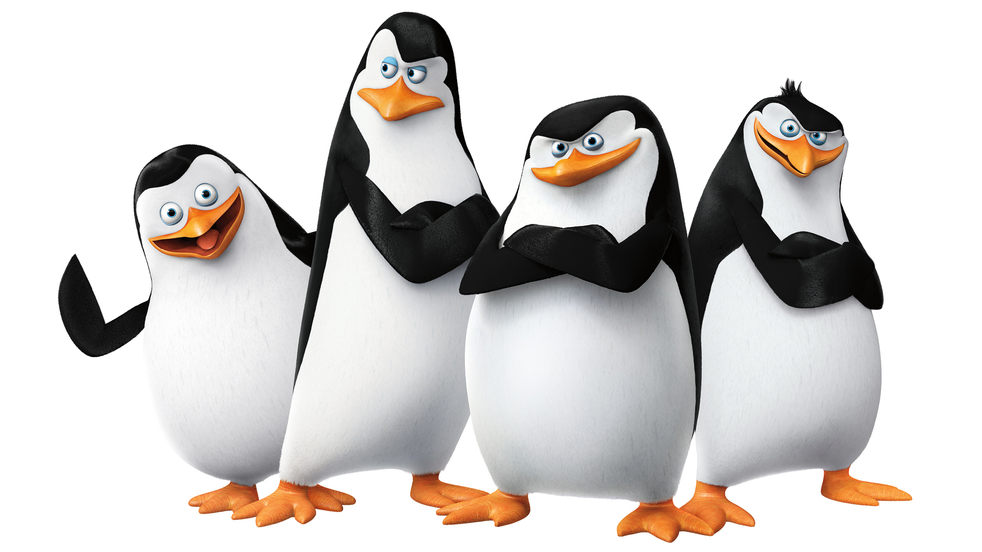 Image   The Penguins Of Madagascar.jpg   Animal Jam Clans Wiki   Fandom Powered By Wikia - Penguin, Transparent background PNG HD thumbnail