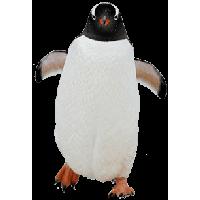 Penguin Png Image Png Image - Penguin, Transparent background PNG HD thumbnail
