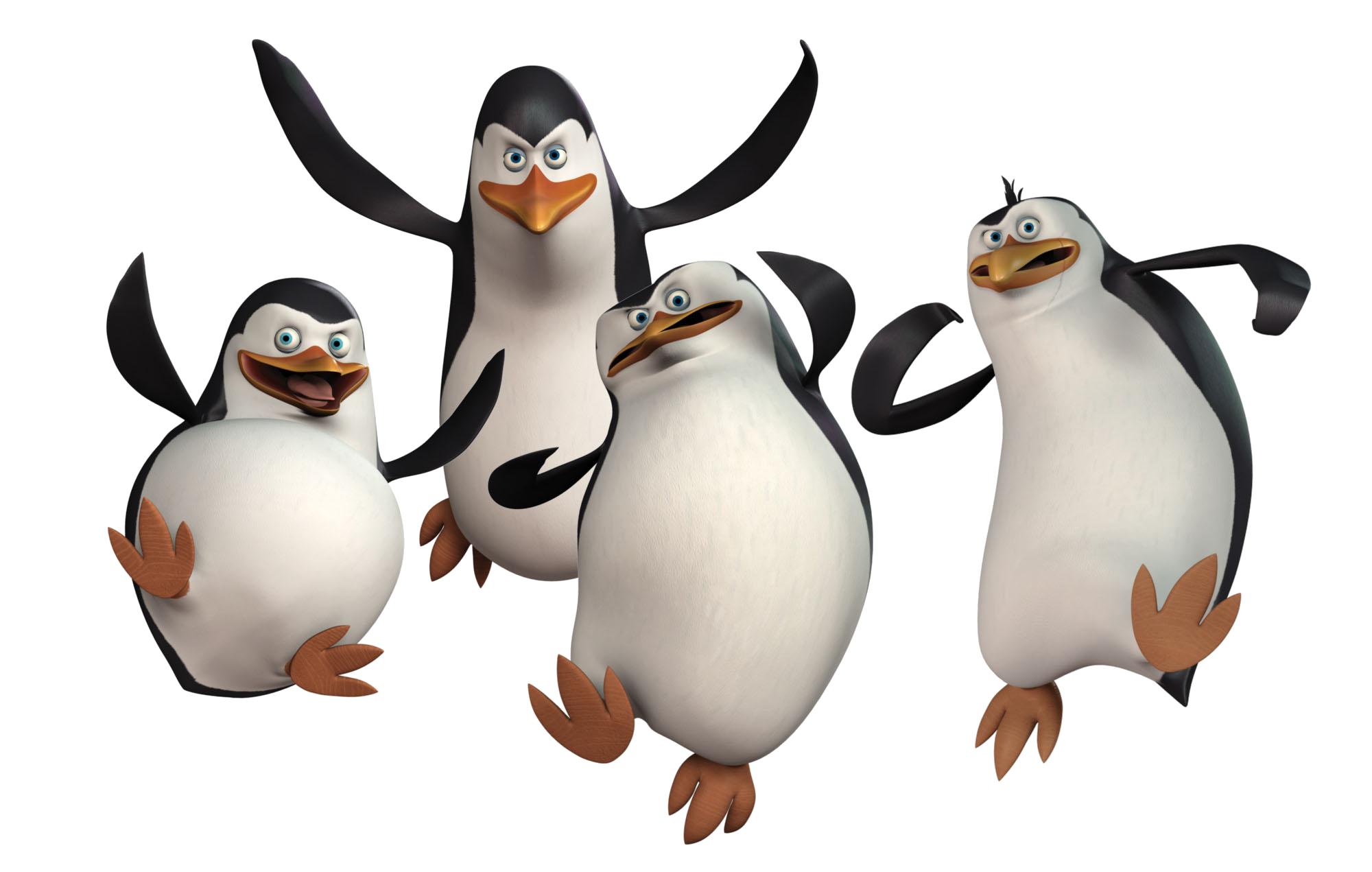 Penguins Transparent Image - Penguin, Transparent background PNG HD thumbnail