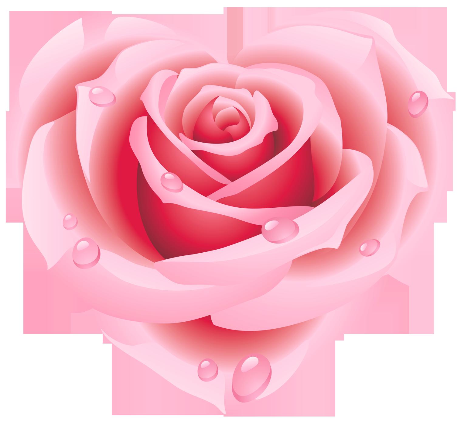 PNG Coeur Rose