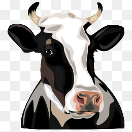 Png Cow Head - Cow Head, Cartoon, Ae, Vector Files Png And Vector, Transparent background PNG HD thumbnail