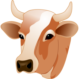 Png Cow Head - Cow Head Icon, Transparent background PNG HD thumbnail