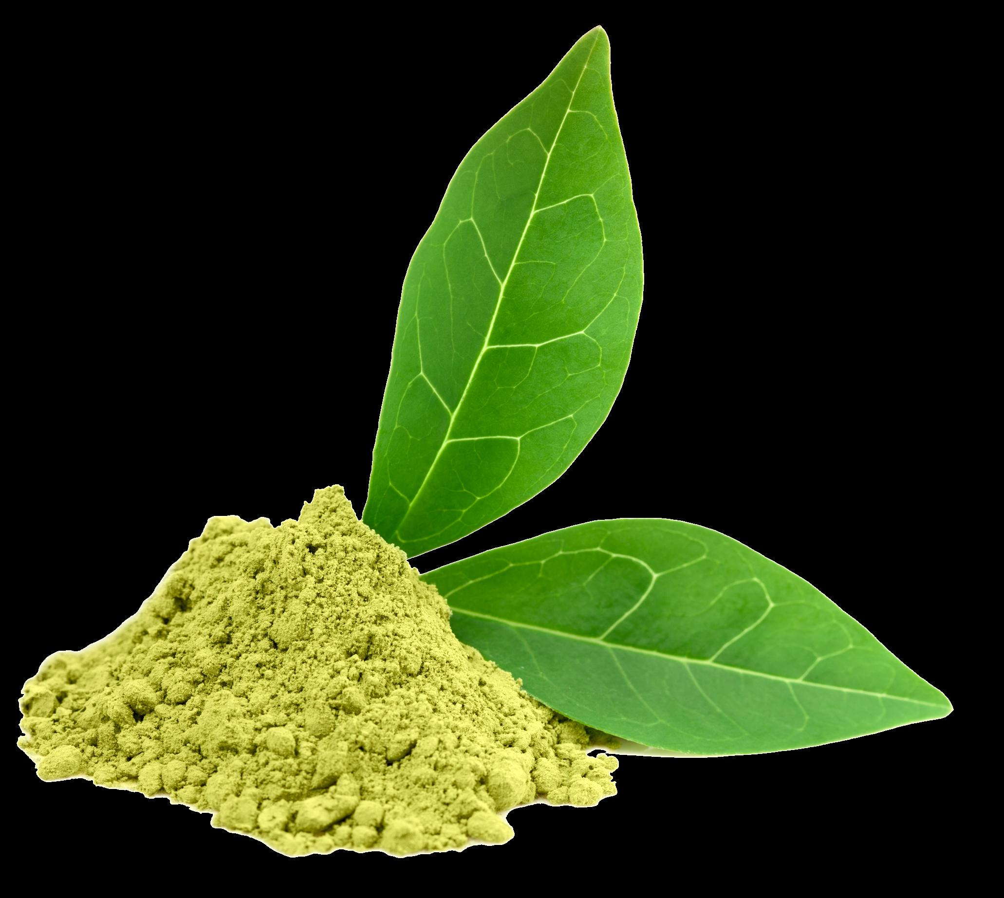 Green Tea PNG