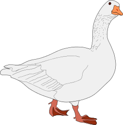 Goose Png Clipart Image #33515 - Goose, Transparent background PNG HD thumbnail