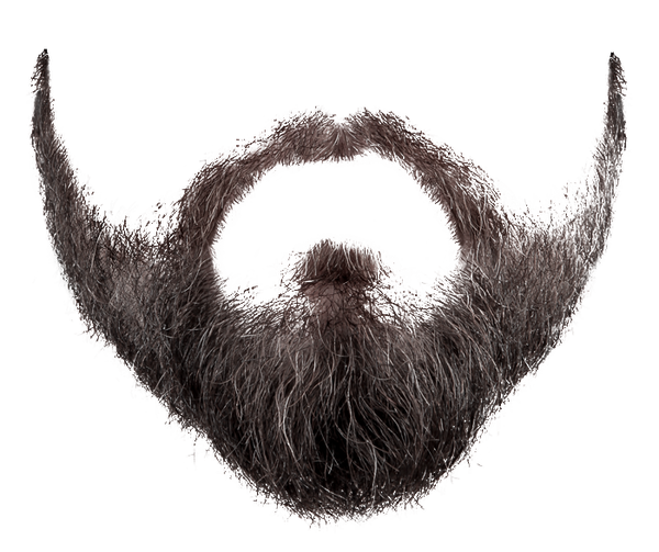 Beard Png Image Beard Png Image Image #857 - Hairstyle, Transparent background PNG HD thumbnail