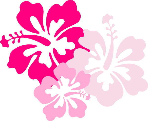 Clip Arts Related To : 12 Hawaiian Flower Icon.png Image - Hawaiian Flower, Transparent background PNG HD thumbnail