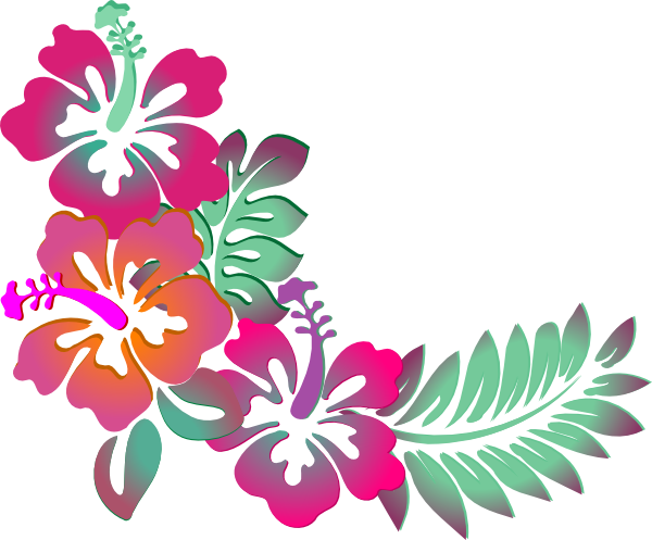 Colorful Floral Corner Borders Png Hibiscus Corner Clip Art - Hawaiian Flower, Transparent background PNG HD thumbnail
