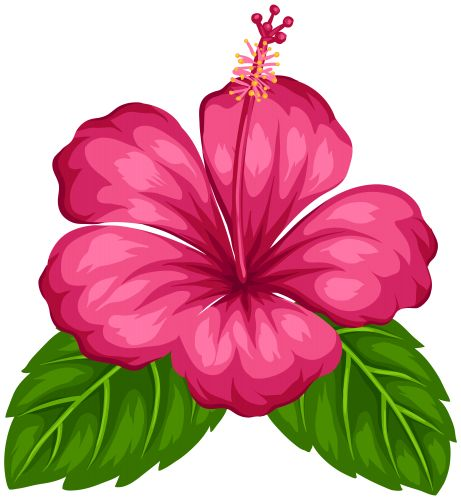Exotic Flower Png Clip Art, Flowers Png / Clipart   Transparent Png Pictures And Vector - Hawaiian Flower, Transparent background PNG HD thumbnail