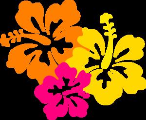 Hawaiian Flower Border Clip Art Clipart Collection - Hawaiian Flower, Transparent background PNG HD thumbnail