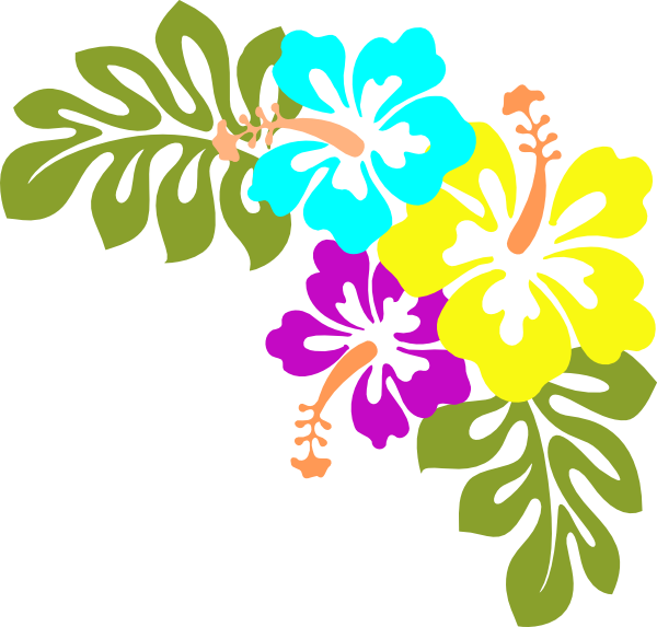 Hawaiian Flower Clip Art - Hawaiian Flower, Transparent background PNG HD thumbnail