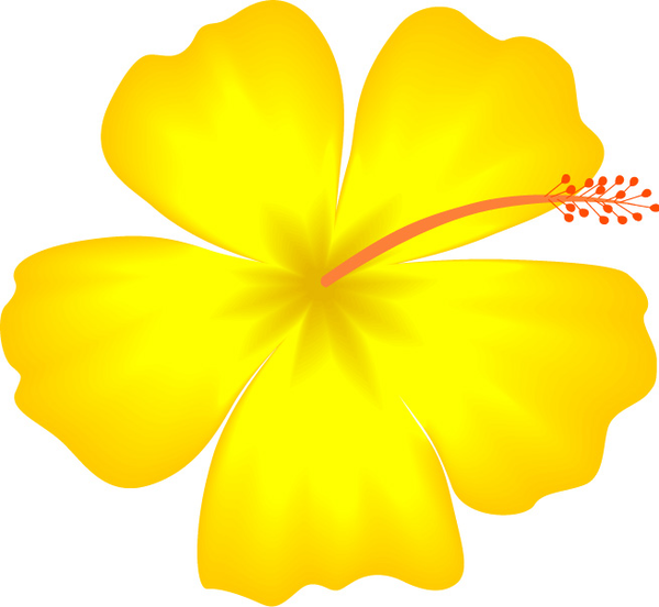 Yellow Hibiscus Hawaii State Flower | Free Images At Clker Pluspng.com   Vector Clip Art Online, Royalty Free U0026 Public Domain - Hawaiian Flower, Transparent background PNG HD thumbnail
