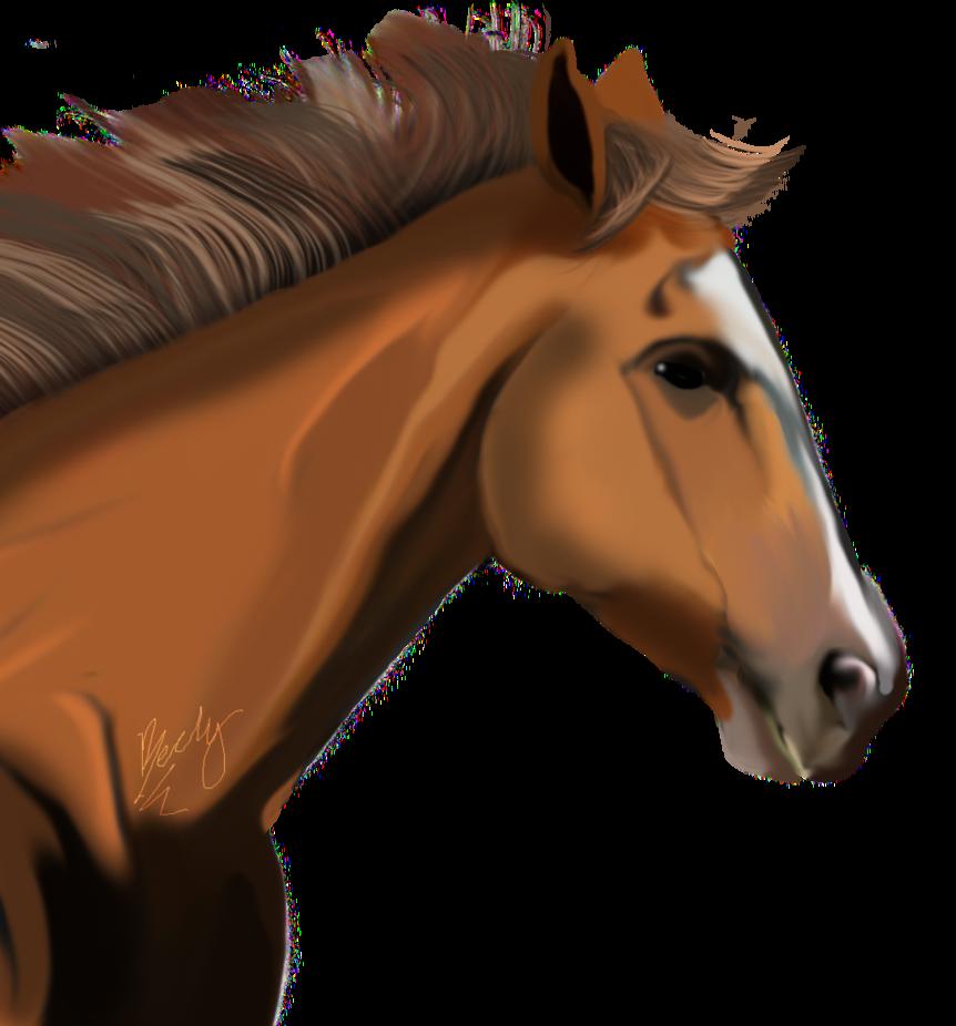 Png Horse Head Hdpng.com 862 - Horse Head, Transparent background PNG HD thumbnail
