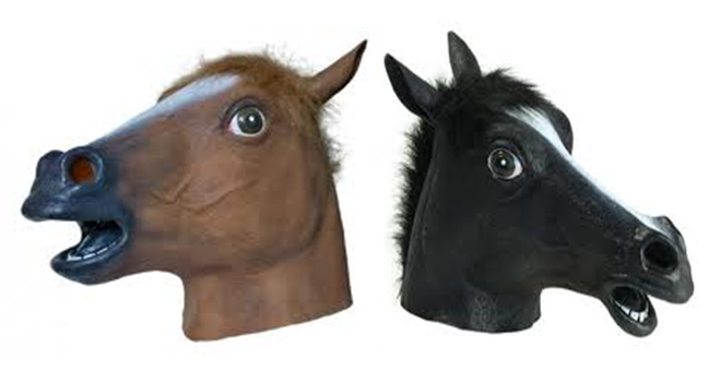 Everyday Neigh Hdpng.com  - Horse Head, Transparent background PNG HD thumbnail