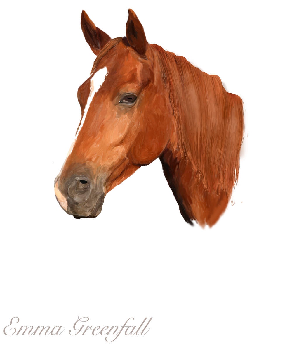 Horse Head By Emmagreenfall Horse Head By Emmagreenfall - Horse Head, Transparent background PNG HD thumbnail