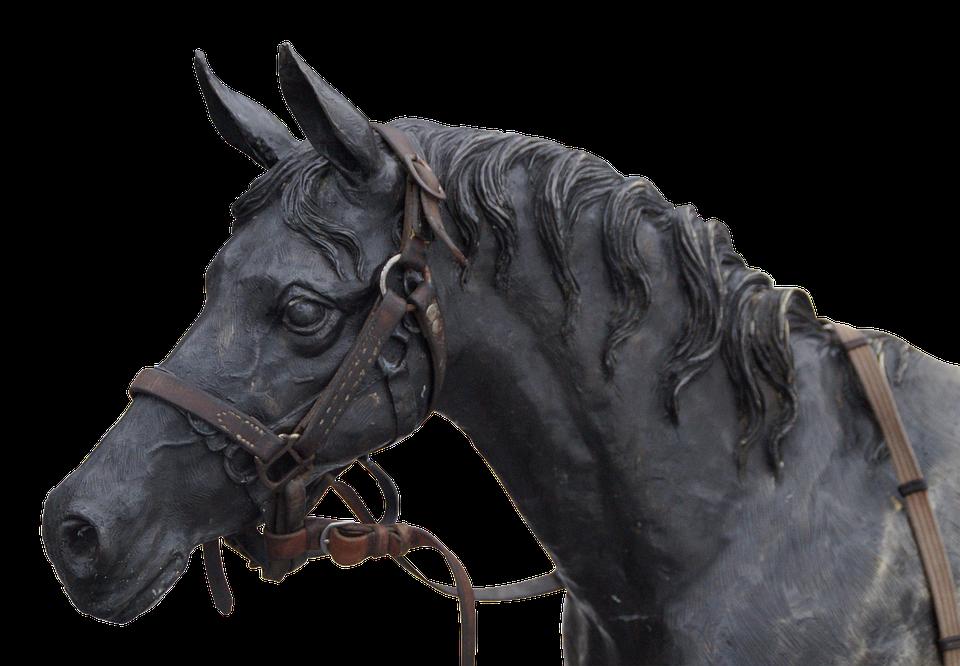 Horse, Horse Head, Portrait, Sculpture, Animal - Horse Head, Transparent background PNG HD thumbnail