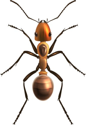 Ant Png Clip Art, Insects Png / Clipart   Transparent Png Pictures And Vector Rasterized Images. - Insects, Transparent background PNG HD thumbnail