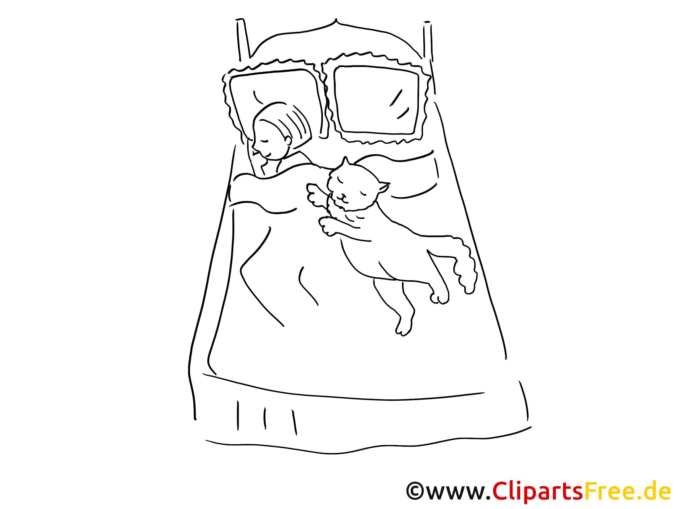 Chat Lit Clipart Gratuit U2013 Cartoons À Colorier - Lit Gratuit, Transparent background PNG HD thumbnail