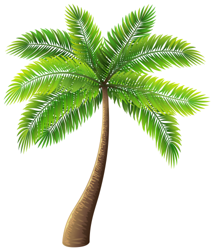 Clipart Palm Tree Freedownload - Palm Tree, Transparent background PNG HD thumbnail