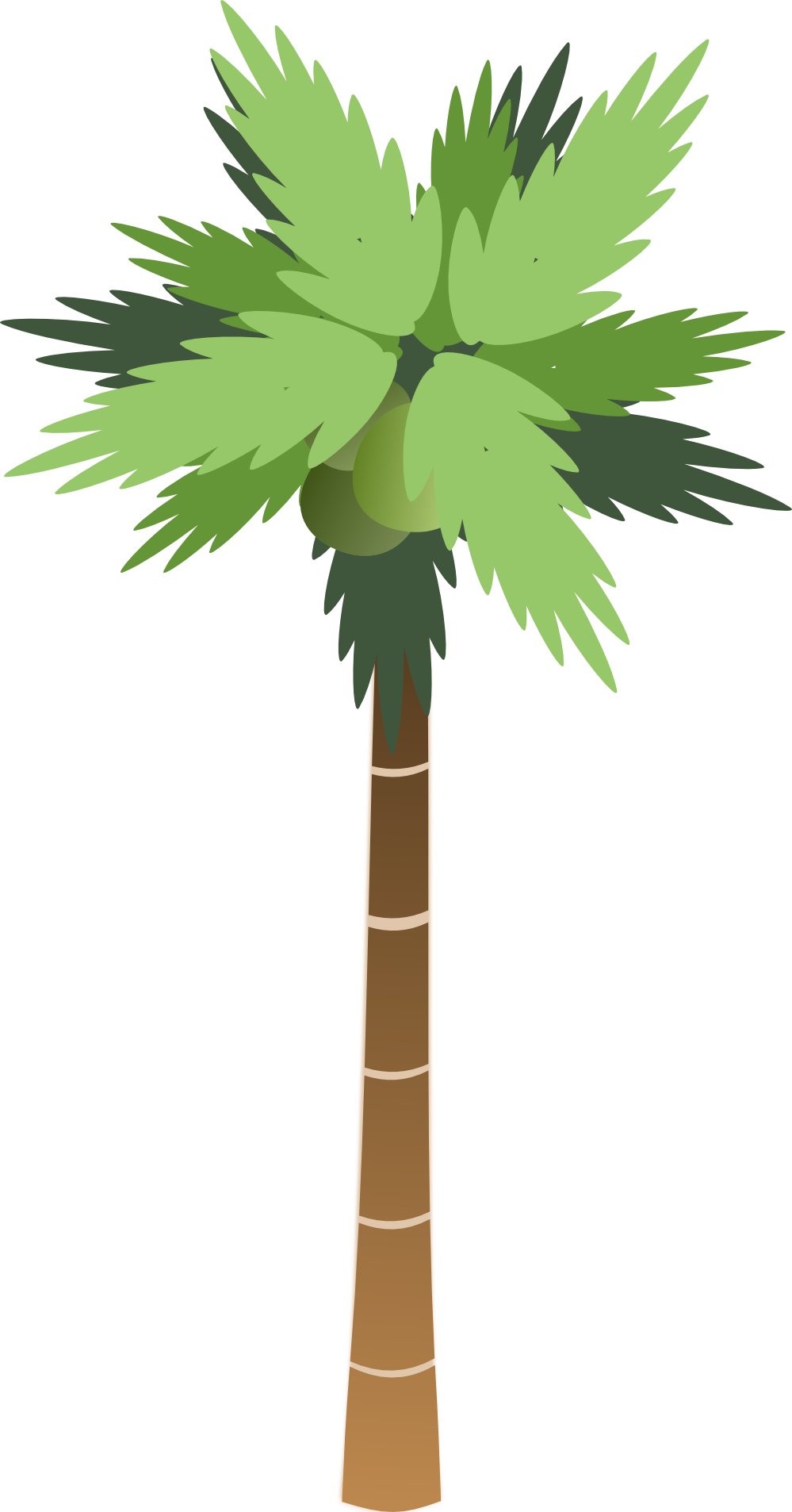 Download Png Image: Palm Tree Png - Palm Tree, Transparent background PNG HD thumbnail