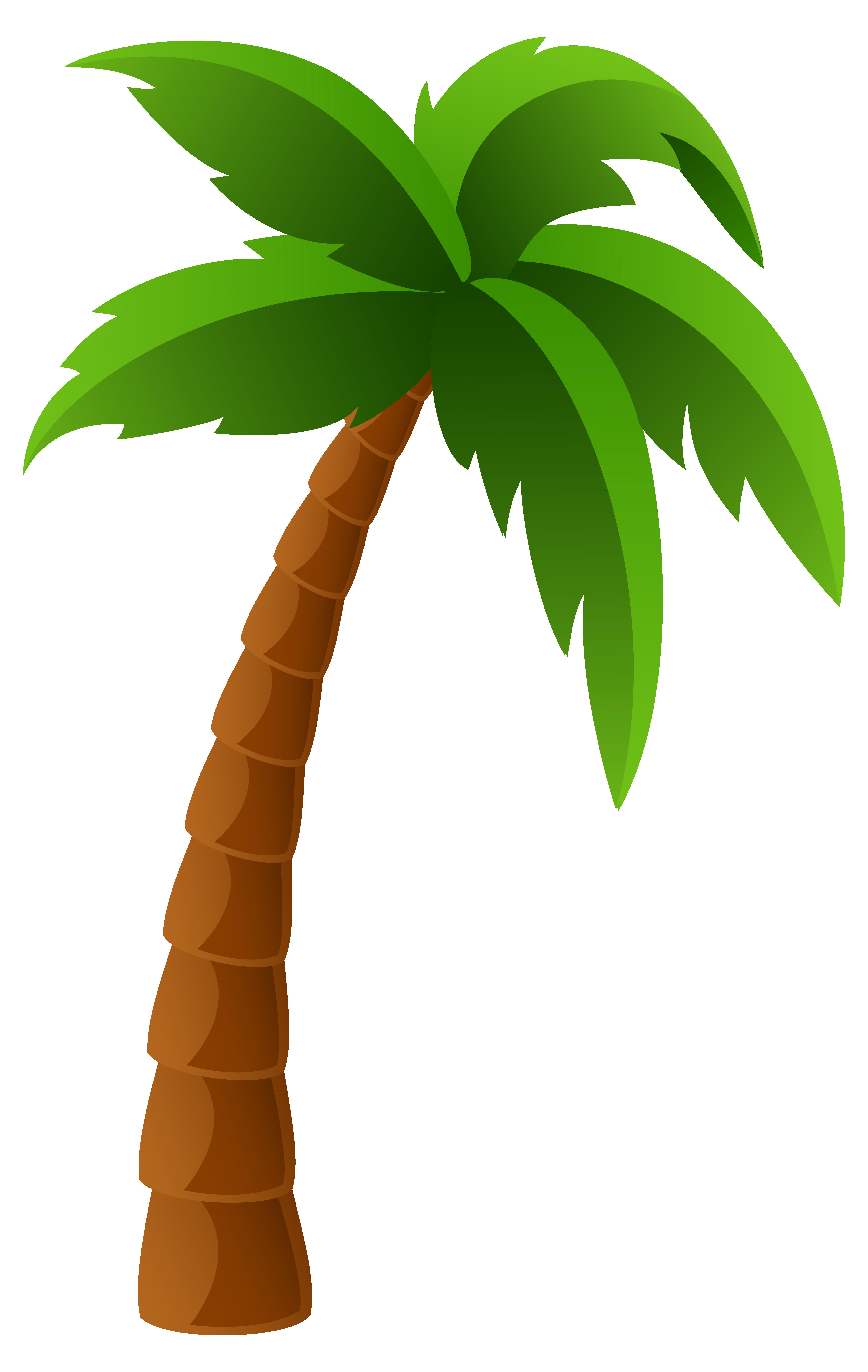 Palm Tree Clip Art 3 - Palm Tree, Transparent background PNG HD thumbnail