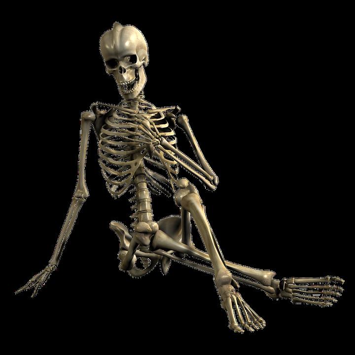 Png Skeleton Bones - Skeleton Sitting Skull Bones Relax 3D Png, Transparent background PNG HD thumbnail