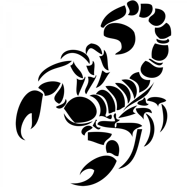 PNG Skorpion