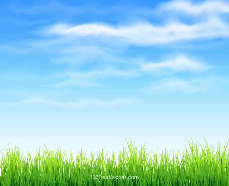 Png Sky Background - Sky And Grass Background, Transparent background PNG HD thumbnail