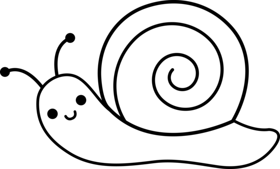 PNG Snail Black And White