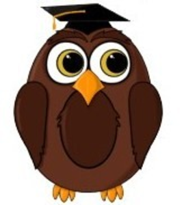 Tl Wise Owl Cartoon Card Copy Image - Wise Owl, Transparent background PNG HD thumbnail