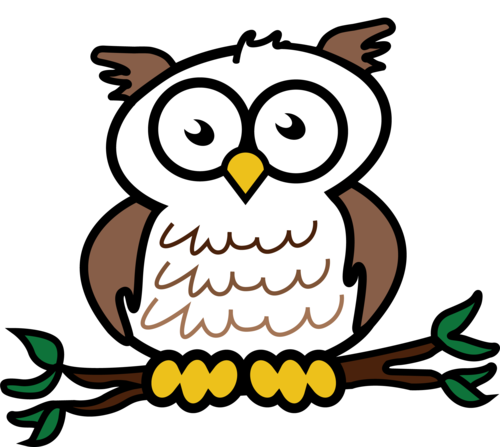 Wise Owl Logo.png - Wise Owl, Transparent background PNG HD thumbnail
