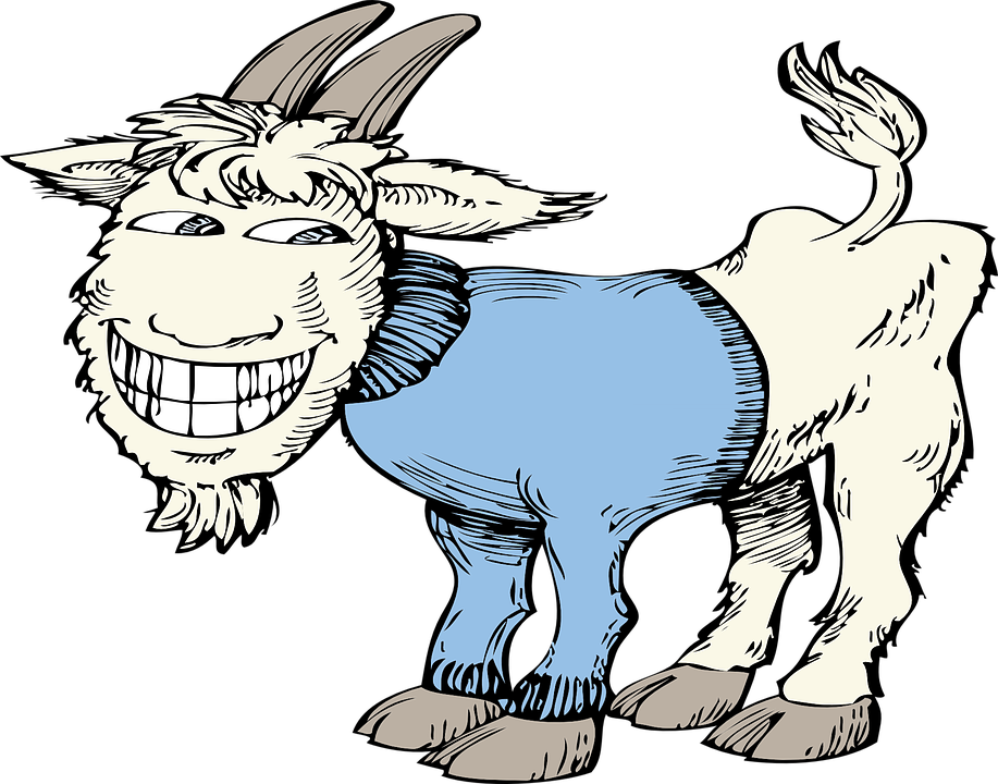 Ziege, Blau, Bauernhof, Pullover, Tier, Lustig, Lachen - Ziegenbock, Transparent background PNG HD thumbnail