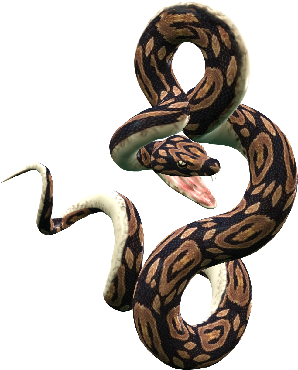 Python Snake Png - Snake Png Image Picture Download Free, Transparent background PNG HD thumbnail