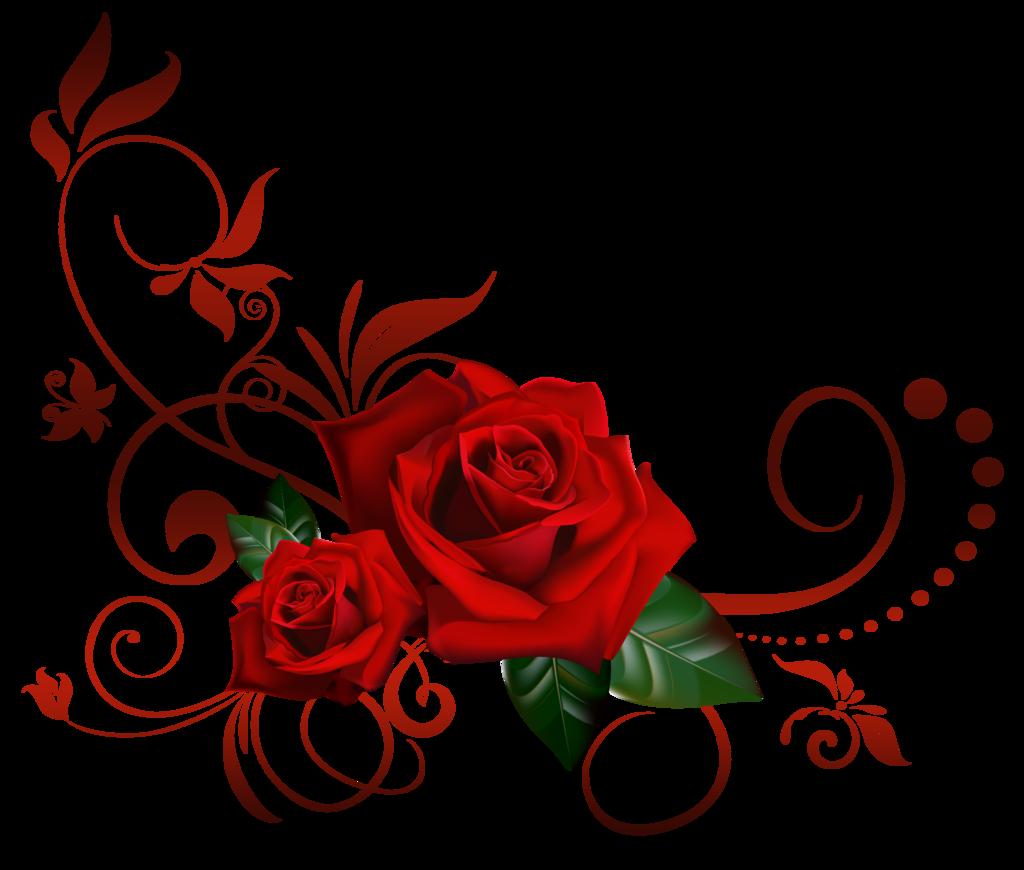 Rose Vine PNG HD