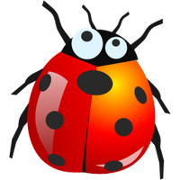 Similar Bugs Png Image - Bugs, Transparent background PNG HD thumbnail