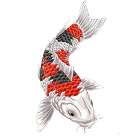 Similar Fish Tattoos Png Image - Fish Tattoos, Transparent background PNG HD thumbnail