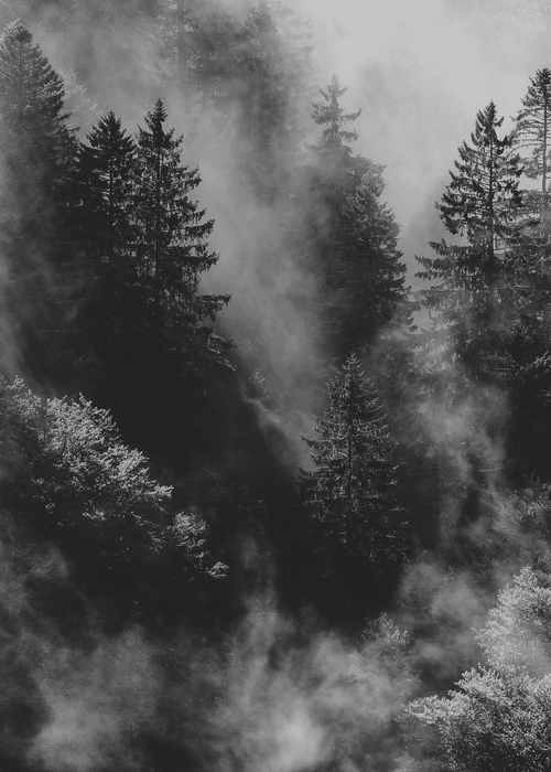 Black And White Tumblr Dark   Google Search - Sky Black And White, Transparent background PNG HD thumbnail