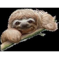 Sloth PNG