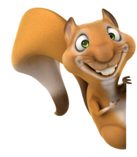 Squirrel With Nut PNG