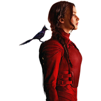The Hunger Games Free Png Image Png Image - The Hunger Games, Transparent background PNG HD thumbnail