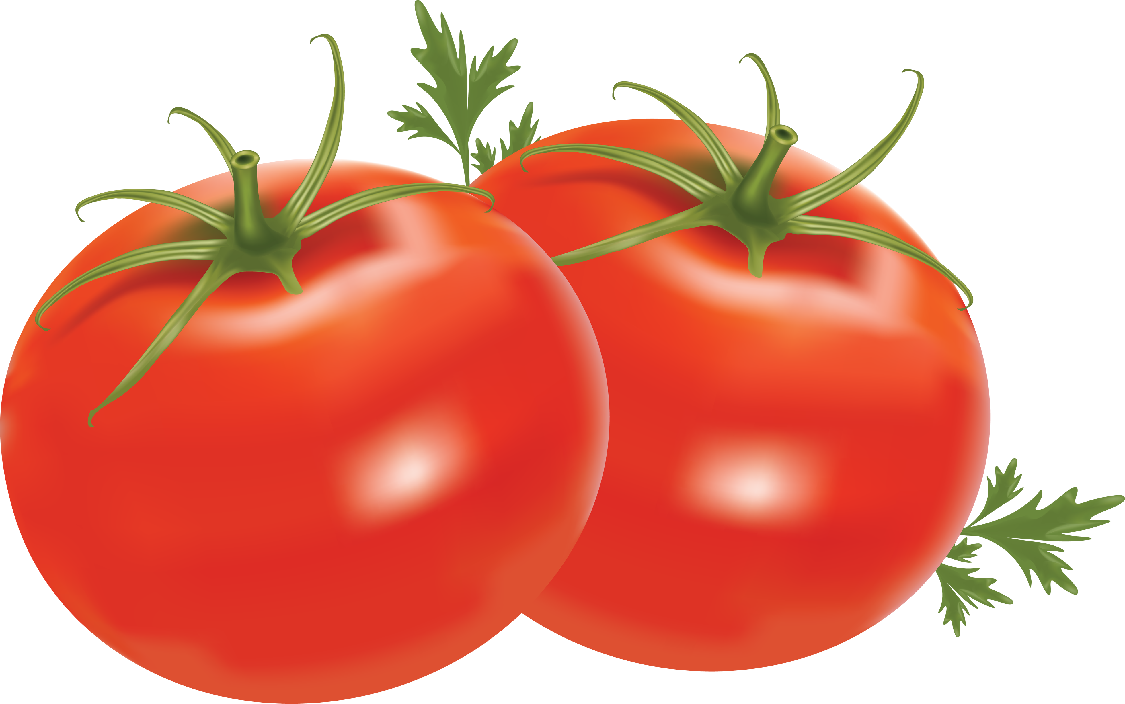 Tomato PNG HD