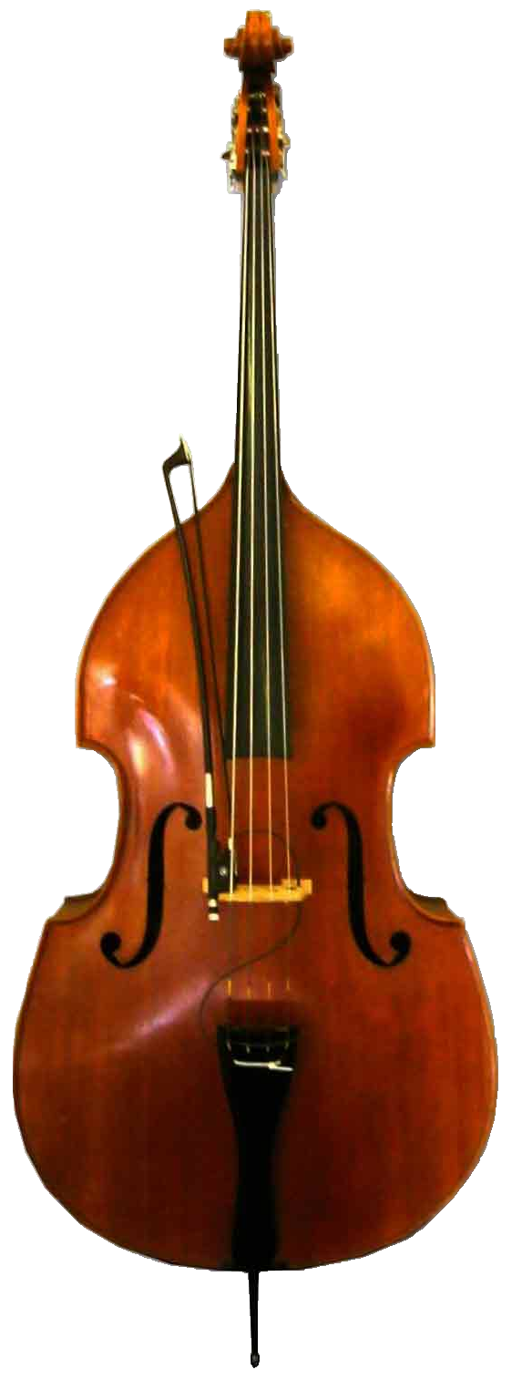 Upright Bass PNG