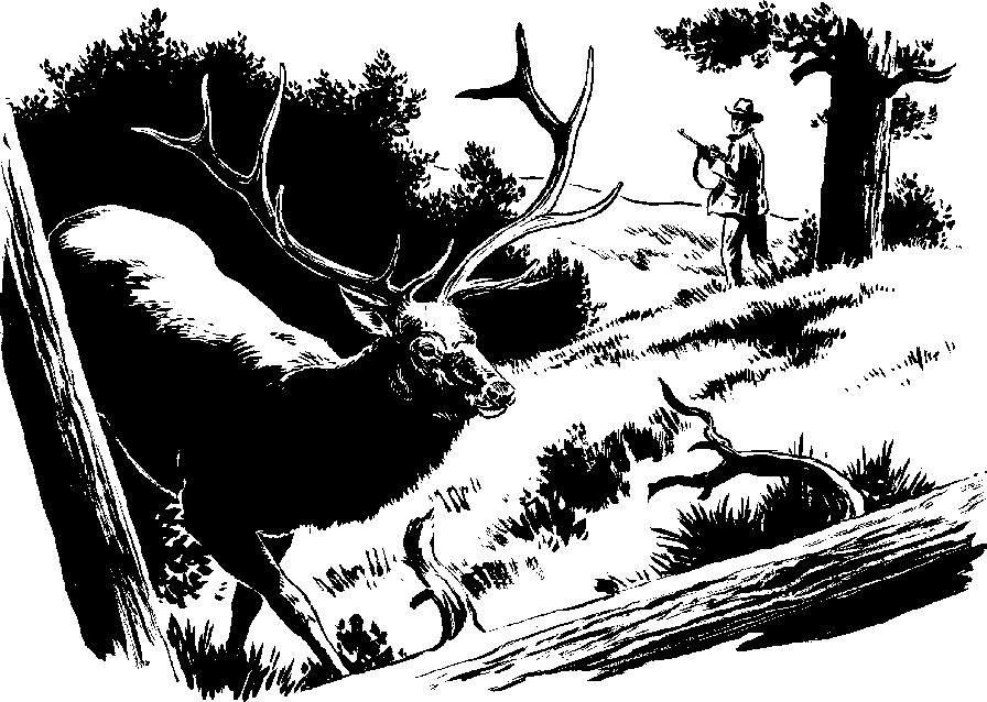 Elk 5 Clipart Cliparts Of Elk 5 Free Download Wmf Emf Svg Image - Wmf Library, Transparent background PNG HD thumbnail