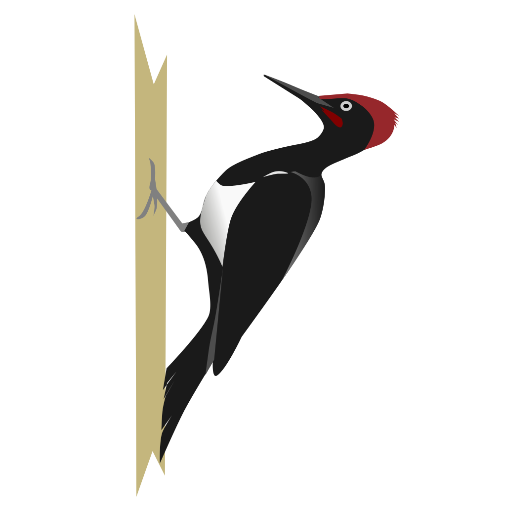 Woodpecker Svg #12, Download Drawings - Woodpecker, Transparent background PNG HD thumbnail